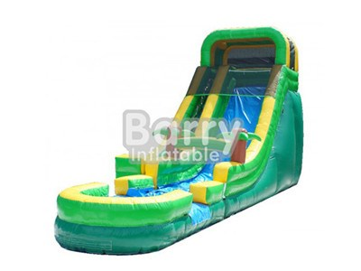 High Quality Jungle Big Inflatable Slides For Sale BY-WS-006