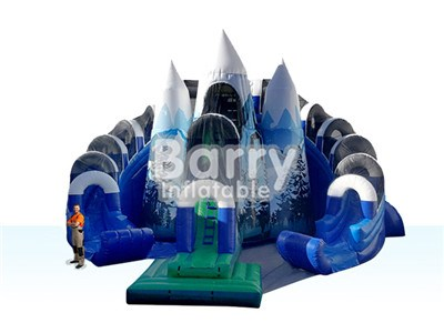 Forest ice double lane inflatable water slide sale China factory BY-WS-012