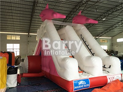 commercial dolphin water slides for pools for sale BY-WS-073