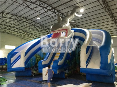 Amazing sharp water slide for pool inflatable China manufacturer BY-WS-080