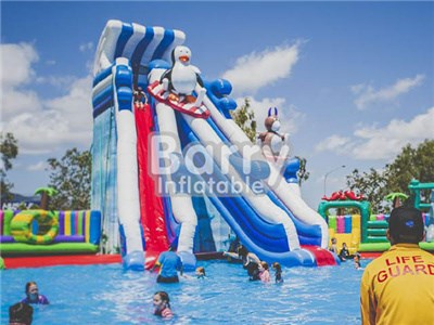cheap water slides for pools , tallest penguin ice inflatable water slide BY-WS-084