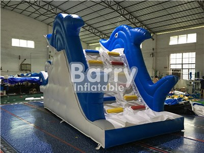 Dolphin inflatable water slide and pool , water park slide China BY-WS-078