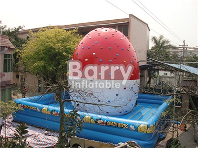 Commercial PVC Rock Inflatable Climbing Wall,Angry Bird Inflatable Rock Climbing Wall Price  BY-IG-056