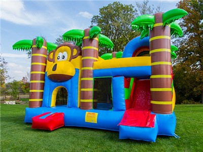 Guangzhou monkey tropical combo dry single slide bounce house BY-IC-011