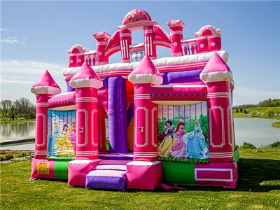 Princess Theme Inflatable Mini Combo Jumper, Bouncy Princess Castle Prices BY-IC-005