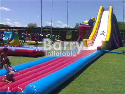 Customized Giant Adult Inflatable Slide , Inflatable Water Slide Factory BY-GS-007