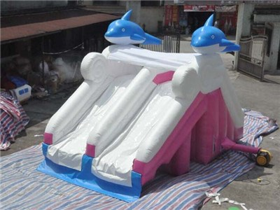 Dolphin Small Inflatable Pool Slide For Sale  BY-WS-0113