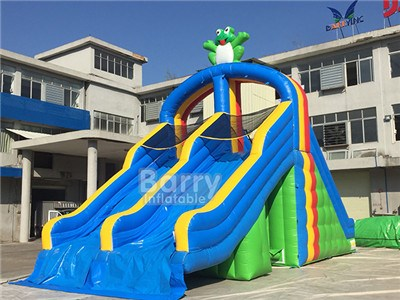 EN14960 Double Slideway Frog Modle Giant Inflatable Water Slide For Adult BY-WS-120