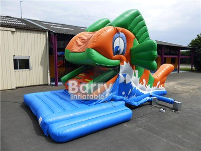 Fish Inflatable Water Slide BY-WS-124